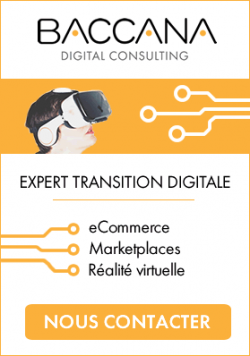 Expert Transition Digitale